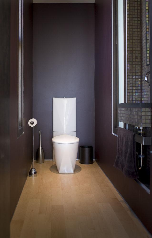 Интерьер длинного туалета фото